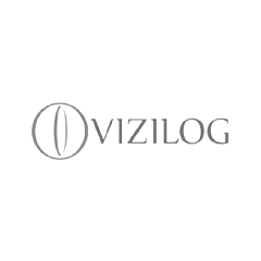 Vizilog Solutions Limited